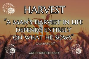 Today's Gold Nugget: HARVEST